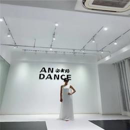 南昌AN DANCE模特台风培训缩略图