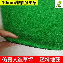 广东室内车展酒吧人造草坪楼顶1公分PP材质塑料假草皮