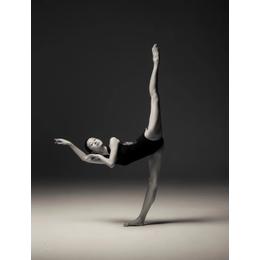 成人舞蹈软开培训课开班了缩略图
