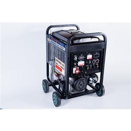 便携式250A氩弧焊发电电焊机