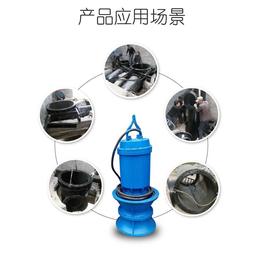 供应天津武清QZB潜水轴流泵大流量潜水轴流泵