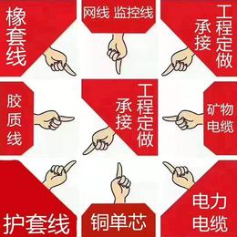 大名珠峰电线电缆生产厂家缩略图