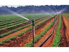 园林灌溉效果图