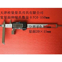 非标卡尺定制-北京非标卡尺-桂量量具