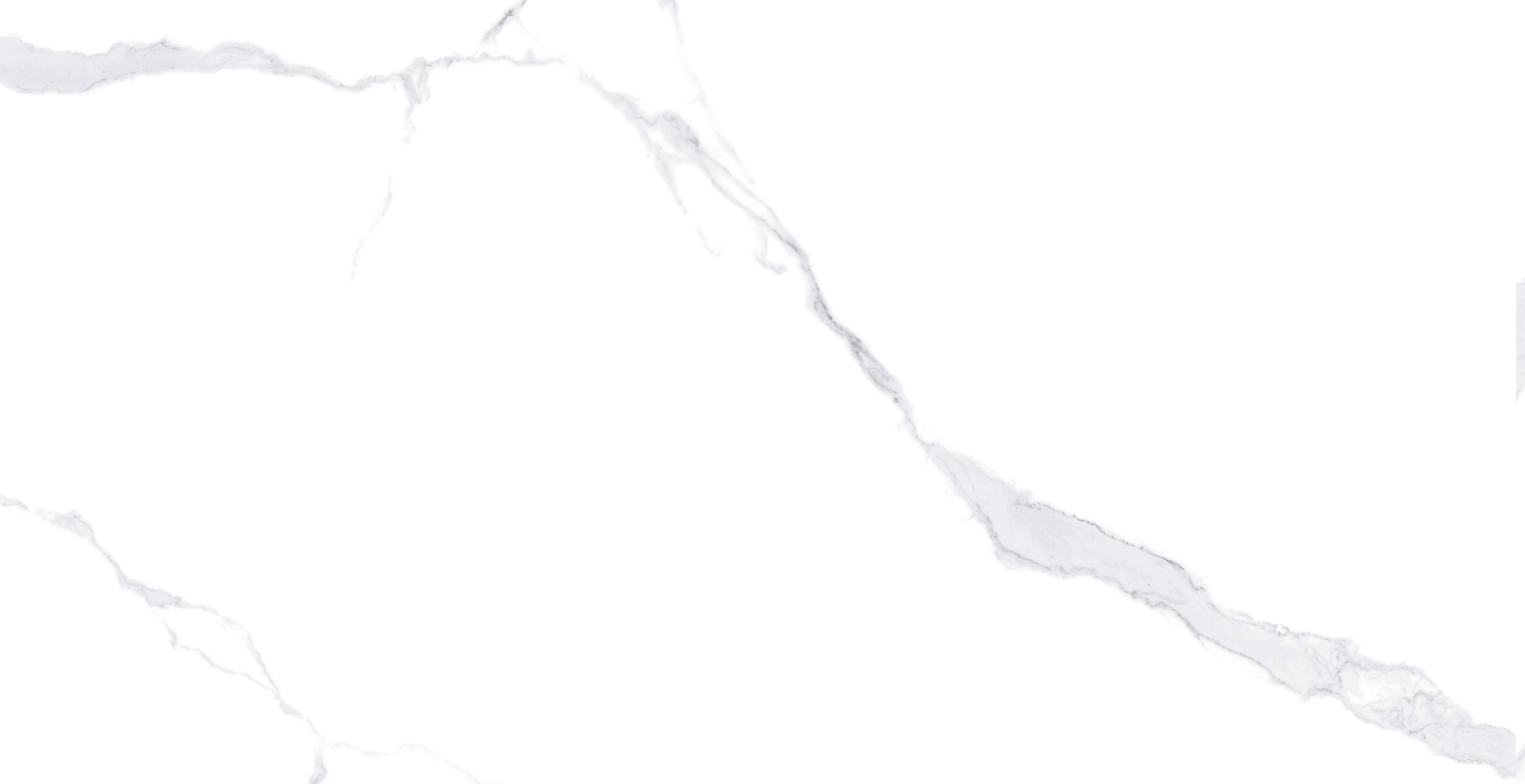 福罗伦3060通体瓷抛中板