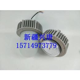 OPG3三防灯LGT8605三防灯LGT8105投光灯
