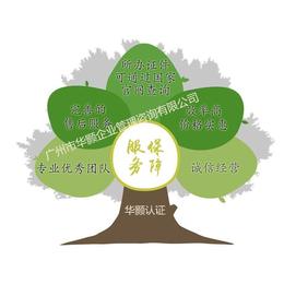 广东省企业诚信信用证书的办理 价格优惠 招投标加分