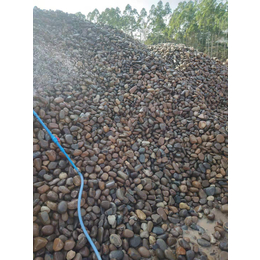 天然鹅卵石滤料批发 广东天然鹅卵石 景观鹅卵石
