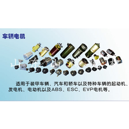 山博电机(图)-微电机公司-东方微电机