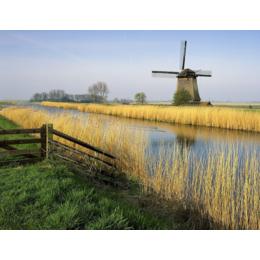 C出国劳务+荷兰造纸厂+急招工人数名+名额有限