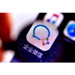 江西景行企业微信市场的未来盘活内部流量