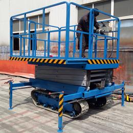 履带升降机 园林剪修高空作业车 高空作业平台 履带升降平台