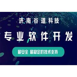 石家庄直销双轨系统方案 微信分销系统开发