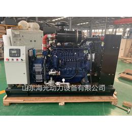 供应亚博国际版80KW燃气发电机组  潍柴燃气发电设备80千瓦