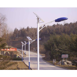 双臂太阳能路灯-安徽普烁光电(在线咨询)-安徽太阳能路灯