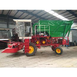 丰沃机械全国出售(图)-单行玉米青贮机-青贮机