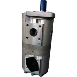 长源HCHC齿轮油泵双联泵环卫车钩臂车CBNL-F563缩略图