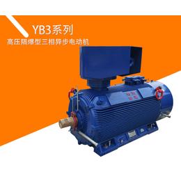 YB3系列高压隔爆型三相异步电动机缩略图