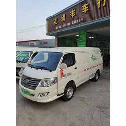 新能源车-友瑞丰(在线咨询)-同安新能源车
