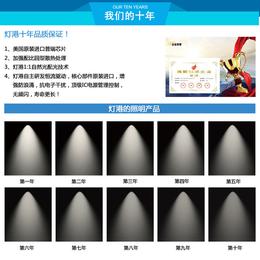 东方隧道灯-LED隧道灯-灯港照明(优质商家)