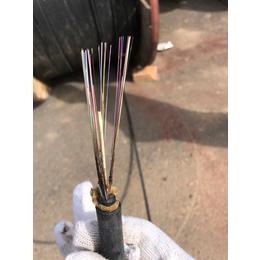 成都上门回收12芯24芯48芯96芯144芯288芯光纤光缆