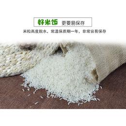 供应广州赢特牌速食大米即食冲泡免蒸煮自热饭盒食品军工食品
