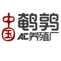 浙江省绍兴市鹌鹑苗多少钱一只