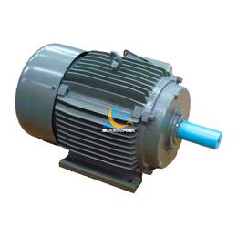 大量生产 高精密度永磁同步电机YT315000品质保证