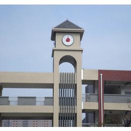 供应建筑塔钟欧式建筑大钟景观钟