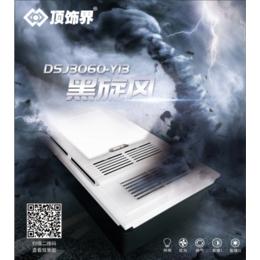DSJ3060-Y13  黑旋风
