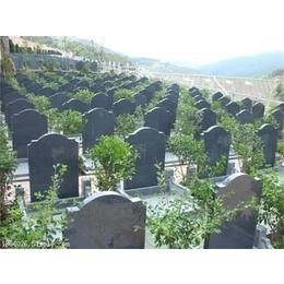 天津公墓价位-孝敬斋殡仪(在线咨询)-天津公墓