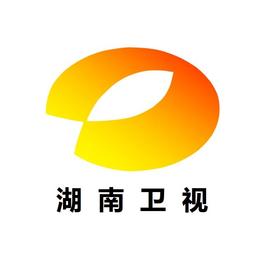 投放湖南卫视广告2020年报价表-做湖南台广告价格表-费用