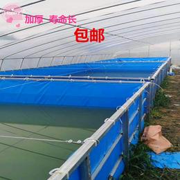 定做高密度帆布水池养殖水箱镀锌板圆形支架鱼池户外蓄水池