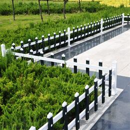广东金栏30高蓝白色塑钢护栏环保美观花坛PVC草坪塑钢护栏