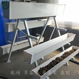 大连定制无土栽培槽 A字架草莓种植槽 提高经济效益