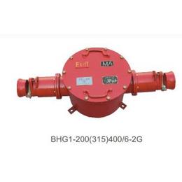 供应BHG1-200-2G矿用隔爆型高压电缆接线盒 厂家