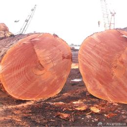 红铁木基本常识 红铁木讲解介绍